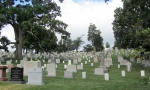 Arlington-graves-5.jpg